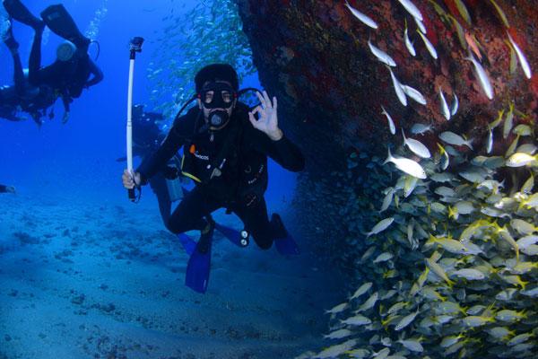 Curso PADI Open Water Alicante. puraventuraspain.com