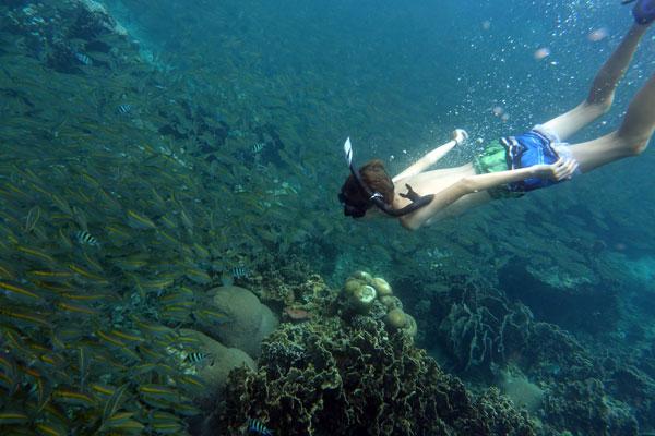 Snorkel Alicante. puraventuraspain.com
